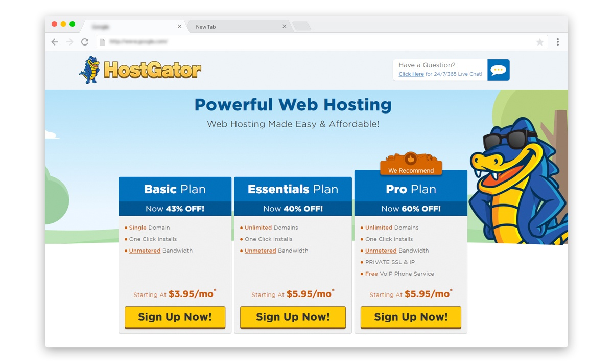 Hostgator web hosting plans and packages